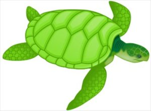Od želvic ne pričakujemo divjih akcijskih prizorov