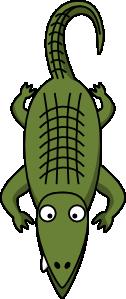 Krokodil ali aligator?