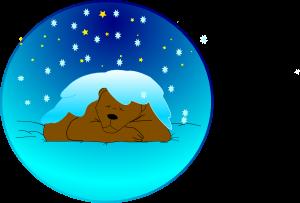 Medved med zimskim spanjem