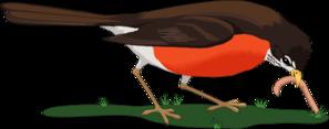 Ptice jedo gosenice, crve, dezevnike in podobne beljakovinske obroke